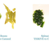THRIVE-vs-Canned