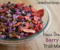 freeze-dried-berry-trail-mix